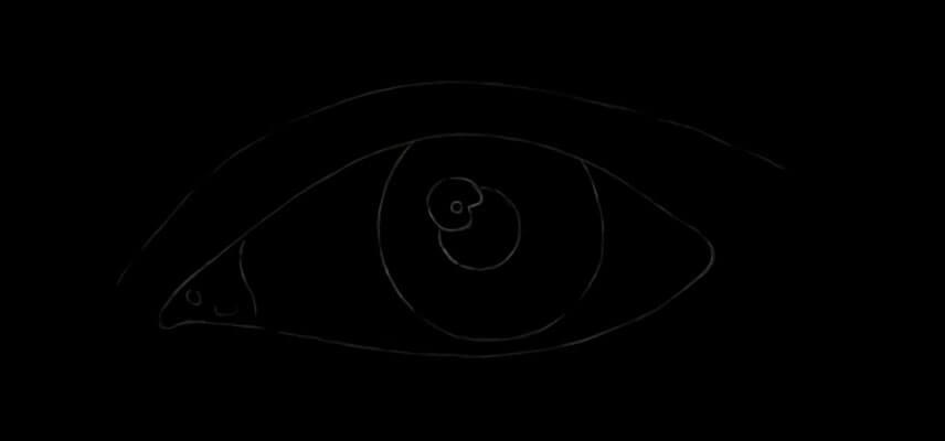 Auge skizze