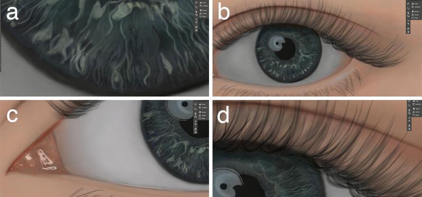 Feinheiten Auge