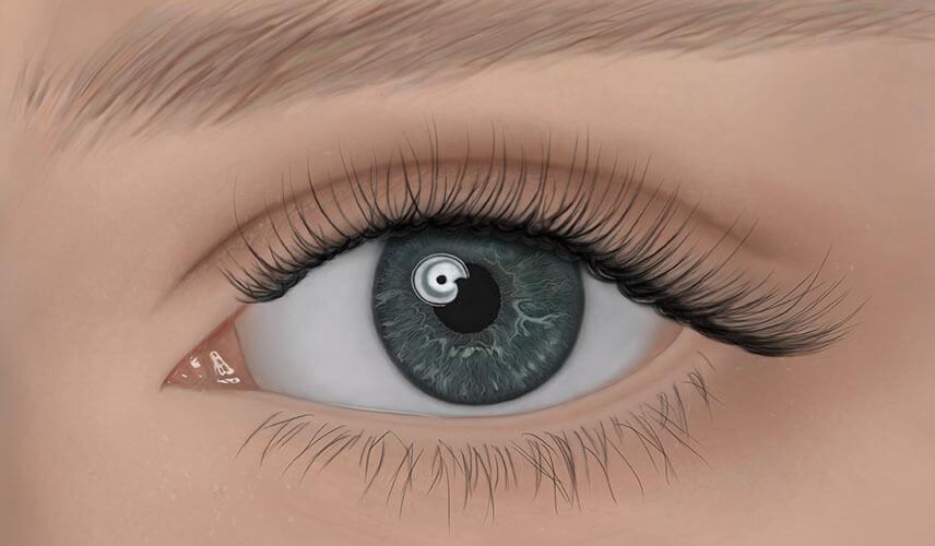 Auge digital zeichnen